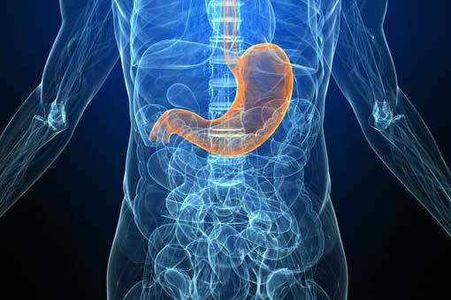 Bowel Cancer and Stomach Cancer